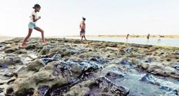 Brezilyadaki Petrol Sızıntısı 150 Plajı Kirletti!