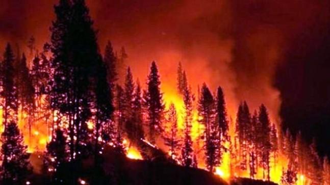California'da Yangın 3 Can Aldı!